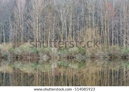 Early spring shoreline of Twin Lakes at sunrise with great blue heron and with reflections in calm water, Michigan, USA