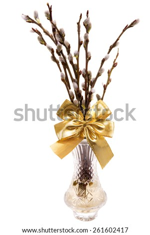 Easte catkins with golden ribbon in vase isolated on white background