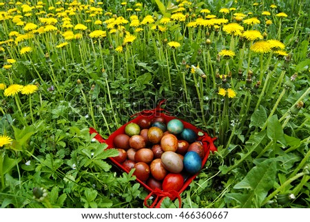 Easter Eggs in The Basket on The Field