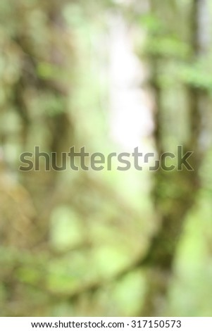 Ecosystem Green Moss Blurred Background