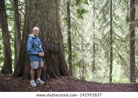 Elderly active man hiking in old growth forest