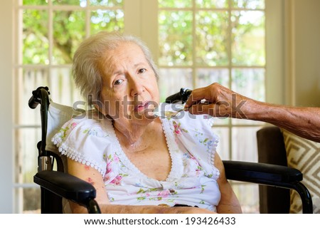Elderly eighty plus year old woman in a wheel chair being fed in a home setting.
