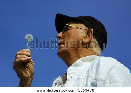 Elderly person / old man making a wish on a dandelion turning to seed in the spring with bright blue sky background
