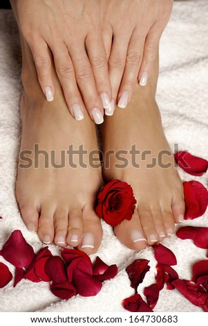 Elegant roses manicured hand and pedicured feet