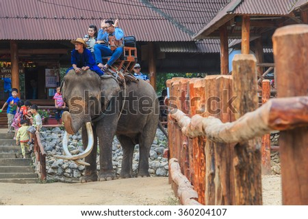 Elephant,Elephant ride,-The Thai Elephant Conservation Center (TECC) cares for more than 50 Asian in a beautiful forest conveniently located -lampang Thailand-9 January 2016.