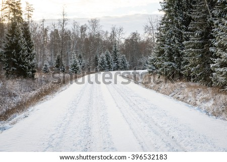 empty road in the countryside with trees in surrounding. perspective in winter