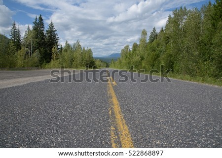 Empty road through green forest