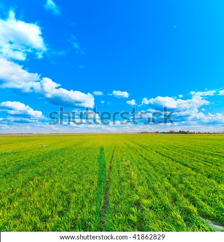 Endless fields (Nuclear power plant in the end)