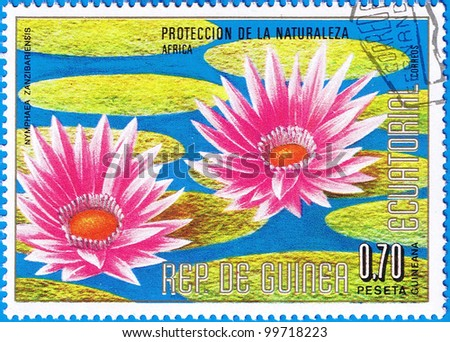 EQUATORIAL GUINEA - CIRCA 1976: A stamp printed in Equatorial Guinea shows Nymphaea zanzibariensis or Water Lily, series is devoted to flowers, circa 1976