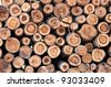 eucalyptus wood log stack - stock photo