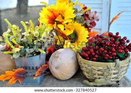 Excellent autumn still life with pumpkin and sunflower