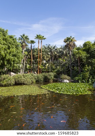 Exotic garden with palms and a koi fish pond