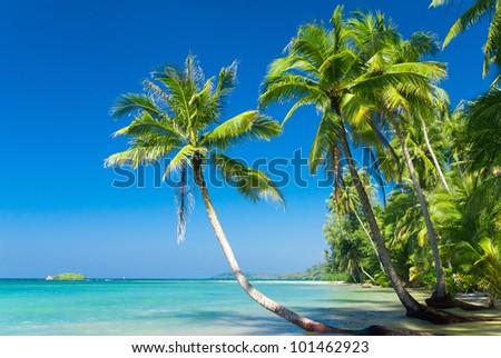 exotic relaxation sunshine coast brothel in surfers paradise