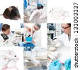Experimental work with mice in laboratory environment, collage - stock photo