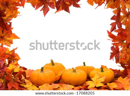 Fall leaves making frame on white background with copy space, colourful fall background frame