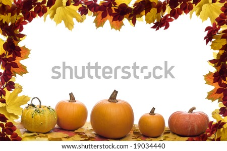 Fall leaves with pumpkin on white background