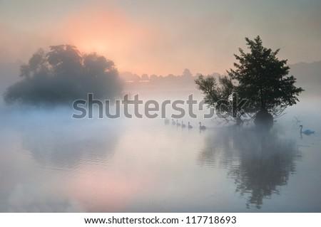Autumn fishing. Misty dawn over the Volga 42