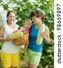 family with  harvested vegetables in greenhouse - stock photo