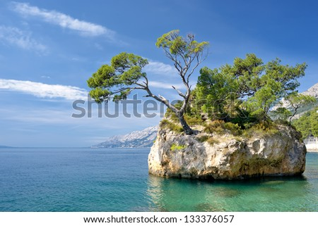 Famous beautiful rock with pine trees in Brela, Croatia