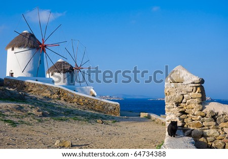 Famous windmills on the island of Mykonos in Greece and the ruins of an old building with a black cat.