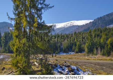 Fantastic Carpathians Mountain landscape in spring with snowy peaks