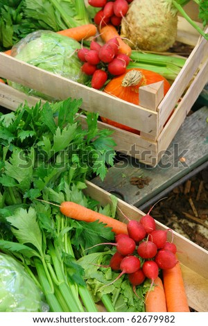 Farm vegetable market
