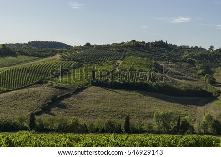 Farmland in Tuscan countryside