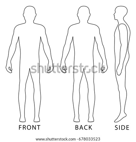 Human Body Front Back Stock Vector 345057020 - Shutterstock