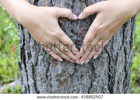 Female hands making an heart shape on a trunk of a tree