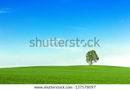 Field with green grass and tree.Green planet - Earth