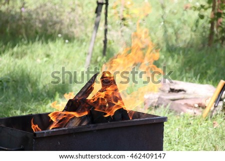 fire burning birch wood in an iron brazier