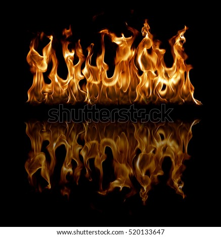 Fire flames isolated in black background