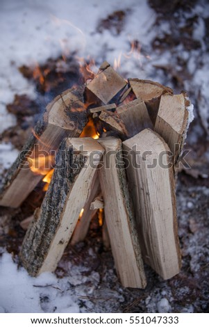 fire in nature. Bonfire in the forest. Winter forest
