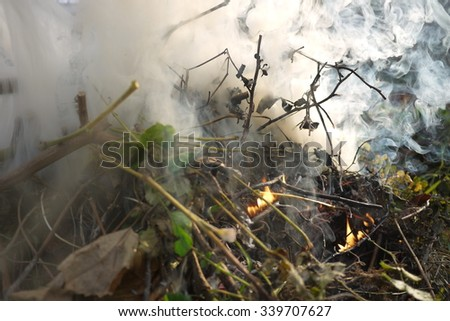 fire,smoke,smoke from fire,garden,autumn on the garden,leaves,clean on the garden,the smell of smoke fire