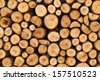 Firewood stack. Staple of biomass, arranged firewood. Stacked wood pine timber for construction buildings  - stock photo