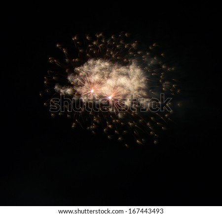 Fireworks Against a Black Sky.