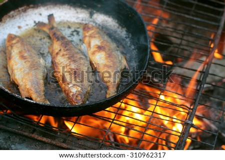 fish frying in oil on the fire