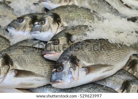 Fish on market