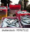 fishers crew put catch of fish in boxes - stock photo