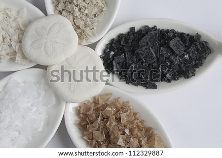 Five different flaked salts on tasting spoons with sand dollars on white background. Closeup