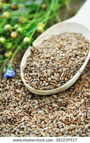 Flax seeds in spoon and linum plants on linseed background
