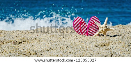flip-flop and starfish on the beach