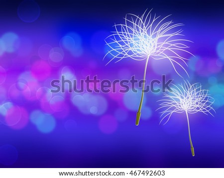 Floating dandelion seeds in the wind. Abstract dark blue background.