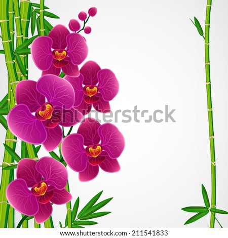 Floral design background. Bamboo and orchids.