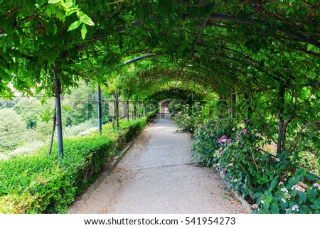 Florence, Italy - July 06, 2016: Tree Tunnel in the Giardino Bardini in Florence. Its an Italian Renaissance garden opened only recently to the public, it is relatively little-known.