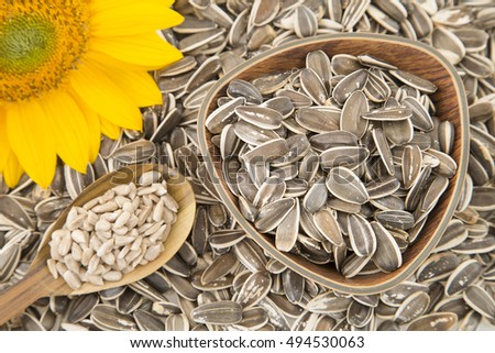 Flower and sunflower seeds