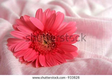 flower on fabric