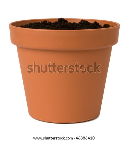 Flower pot with soil