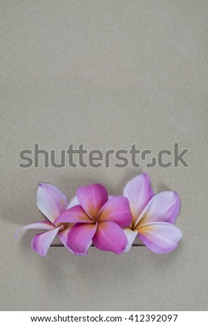Flower with brown paper background.