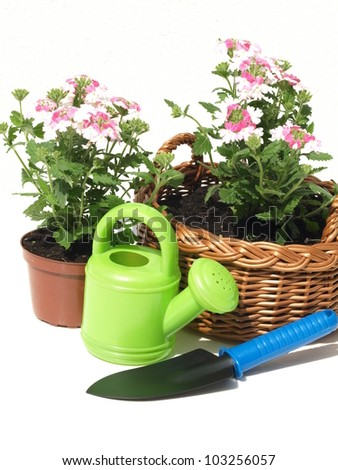Flowerpot, wicker, seedling and shovel on white background